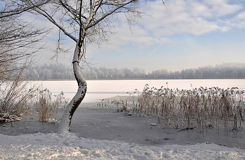 Zima w EGO