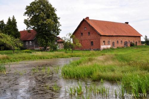 Plewki 2011